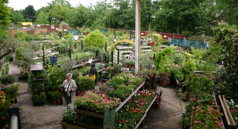 Garden Centre: Camden Garden Centre Charitable Trust